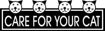 Care For Your Cat